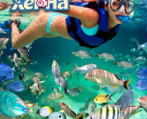 Xel-Ha Park the world's most beautiful natural aquarium