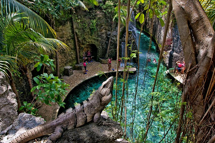 Xcaret Park - Beach in Mexico - Thousand Wonders  |Xcaret Adventure Park